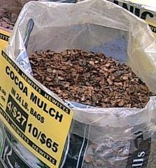 cocoa_mulch