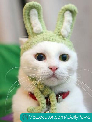 easter-animals-01