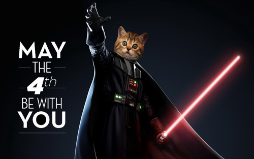 Northwest Orthodontics | May The 4th Be With You - Northwest.