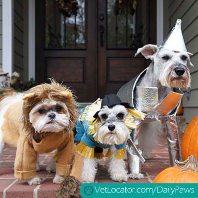halloween-pet-parade-02