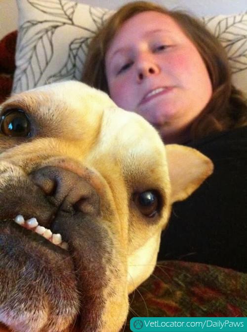 Funny-animals-human-selfies-07
