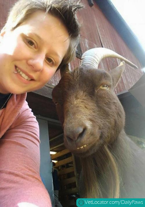 Funny-animals-human-selfies-12
