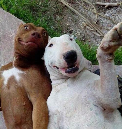 selfie-monday