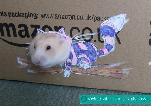 dress-up-hamster4