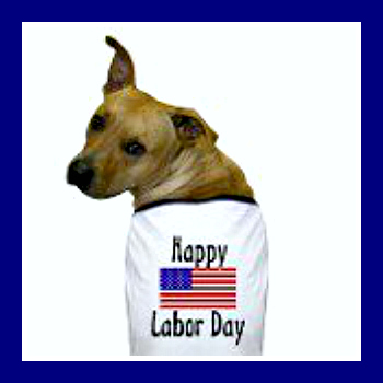 VetLocator.com Daily Paws Happy Labor Day!
